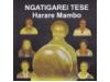 Harare Mambo - Ngatigarai Tese