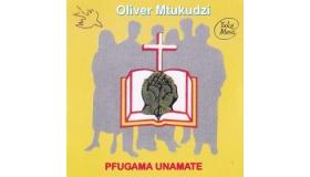 Oliver  Mtukudzi - Pfugama Unamate