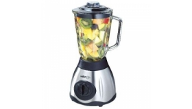 Salton Stainless Steel Elite Blender